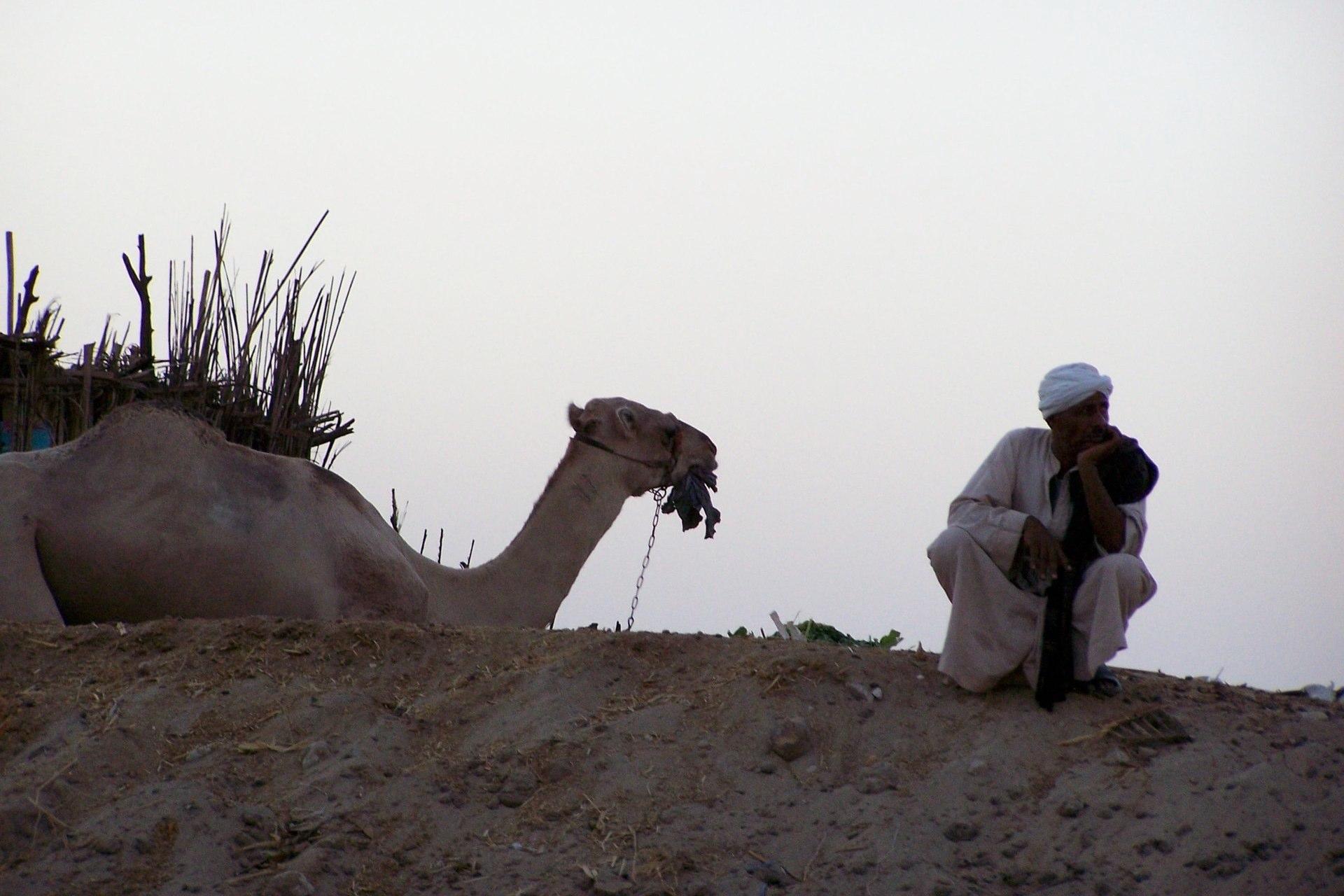 Luxor Mann mit Kamel