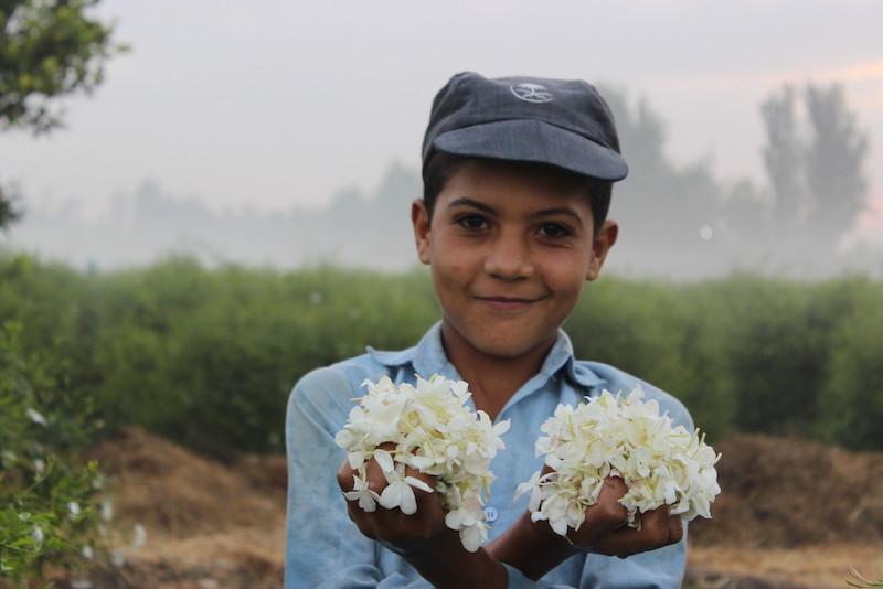 Junge mit Jasmin Blüten